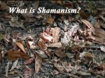 whatisshamanism